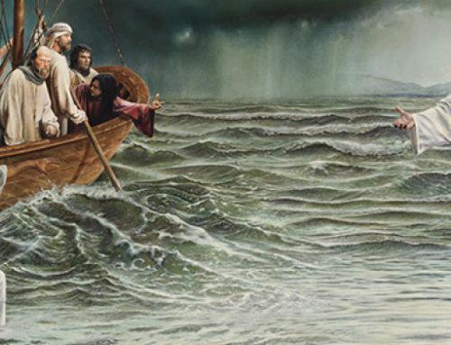 Op water leren lopen